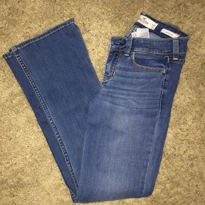 Hollister low rise bootcut